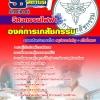 แนวข้อสอบวิศวกรรมไฟฟ้า องค์การเภสัชกรรม 2560