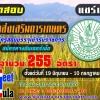 กรมส่งเสริมการเกษตร เปิดรับสมัครสอบบรรจุเข้ารับราชการ 255 อัตรา จำนวน 255 อัตรา สมัครทางอินเตอร์เน็ต ตั้งแต่วันที่ 19 มิถุนายน - 10 กรกฎาคม 2560