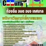 แนวข้อสอบข้าราชการไทย ข้อสอบข้าราชการ หนังสือสอบข้าราชการพนักงานวิเคราะห์นโยบายและแผน ท้องถิ่น อบต อบจ เทศบาล อปท