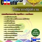 แนวข้อสอบข้าราชการไทย ข้อสอบข้าราชการ หนังสือสอบข้าราชการโภชนากรปฏิบัติงาน กรมควบคุมโรค