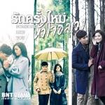 DVD รักครั้งใหม่ หัวใจอลเวง (Someone Like You) 7 แผ่น พากย์ไทย