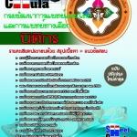 หนังสือเตรียมสอบ คุ่มือสอบ แนวข้อสอบนิติกร กรมพัฒนาการแพทย์แผนไทยและการแพทย์ทางเลือก