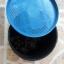 ไส้เดือน 100 ตัว (Blue worm) อาหารสดให้นก ปลา plant003 thumbnail 3