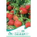 OV02 สตรอเบอรี่ Strawberry
