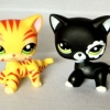แพ็คคู่แมว #1451,#2249 (ขายดี)