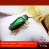 RTN259 เข็มกลัดแมลงทับฝังเพชร V.2