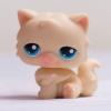 แมวเปอเซีย สีเหลืองอ่อน #380