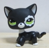 LPS-2249 แมว Siamese สีดำ (หายากมาก)