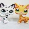 แพ็คคู่แมวลายเสือ ขาว-เหลือง