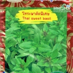 OP28 โหระพาคัดพิเศษ Thai Sweet Basil