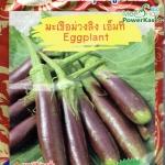 OP44 มะเขือม่วงลิง เอ็มที Purple Eggplant
