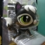 Countess Cattery cat สีดำ (แพ็ค) thumbnail 2