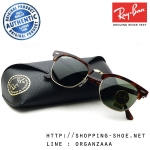 RayBan - RB3016 W0366 Clubmaster Classic Mock Tortoise Gold, 51 mm.