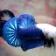 ปลากัดคัดเกรดครีบสั้น - Halfmoon Plakad Over Tails BlueSky White Head Premium Quality Grade AAA+ thumbnail 3