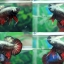"""(ขายแล้วครับ)""""คัดเกรด""""ปลากัดครีบสั้น-Halfmoon Plakats Red Copper thumbnail 1"""