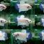 """(ขายแล้วครับ)""""คัดเกรด""""ปลากัดครีบสั้น-Halfmoon Plakats Marble thumbnail 1"""