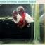 """(ขายแล้วครับ)""""คัดเกรด""""ปลากัดครีบสั้นหูช้าง-Halfmoon Plakats Big Ear Lavender thumbnail 12"""