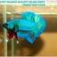 """(ขายแล้วครับ)""""คัดเกรด""""ปลากัดครีบสั้น-Halfmoon Plakats Fancy Green Nice Tails Nice Form thumbnail 5"""