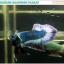 """(ขายแล้วครับ)""""คัดเกรด""""ปลากัดครีบสั้น-Halfmoon Plakats Grizzled thumbnail 6"""