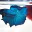 ปลากัดครีบยาวหางพระจันทร์ครึ่งดวง - Halfmoon Premium Quality Grade Super BlueGreen thumbnail 2