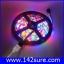 LES033 ไฟLED RGB 300LEDs Flexible Strip Ribbon 5M 3528 12V 60LED/M เปลี่ยนสีได้ (ไม่กันน้ำ) thumbnail 1