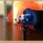 คัดเกรดปลากัดครีบสั้นแฟนซีคัดเกรด - HalfMoon Plakat Blue Dragon thumbnail 3