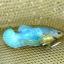 คัดเกรดปลากัดครีบสั้นเพศเมีย - Female Over Tails Halfmoon Plakad Premium Quality Grade AAA+ thumbnail 4