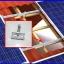 อุปกรณ์ยึดรางแผงโซล่าเซลล์กับโครงหลังคา CPAC อุปกรณ์ติดตั้งแผงโซล่าเซลล์มาตรฐานสากล ผลิตจากแสตนเลสและอลูมิเนียมอัลลอยคุณภาพดี เบอร์9 thumbnail 2