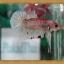 (ขายแล้วครับ)HMPKFC ปลากัดครีบสั้นเกรดประกวด thumbnail 2