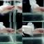 (ขายแล้วครับ)ปลากัดครีบสั้น -Halfmoon Plakats thumbnail 1