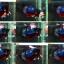 """(ขายแล้วครับ)""""คัดเกรด""""ปลากัดครีบสั้น-Halfmoon Plakats Super Fancy Ghost Devil Grade A thumbnail 2"""