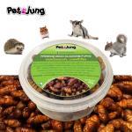 ***SALE (EXP 15/8/61) PetsJunG - Premium Dried Silkworm Pupae หนอนไหมอบแห้ง (40g.)