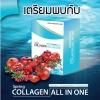 Sping Collagen All in one คอลลาเจน ออลอินวัน