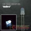 """LED 5mm หลอดขาวขุ่น แสงสี """"ขาว"""" (100 Pcs)"""