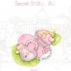 Secret รักลับ... ลับ ชุด Ugly Duckling ของ วีสาม