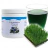 Super Chlorophyll