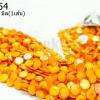 เปลือกหอย กลมแบน สีเหลืองทอง 14มิล (1เส้น)
