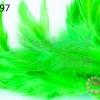 ขนนก(ก้าน) สีเขียวอ่อน (20ชิ้น)