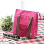 T033 Picnic Bag