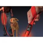 สายจูงสุึนัขและพร้อมปลอกคอ LED Multi-color ไฟเปลี่ยนสีได้หลายสี