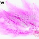 ขนนก(ก้าน) สีชมพู (20ชิ้น)