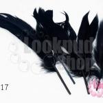 ขนนก สีดำ 5 ชิ้น