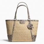 กระเป๋า COACH ALEXANDRA CHAIN STRAW TOTE F21959