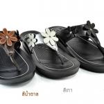 รองเท้า Kito KWU-545 เบอร์ 36-40