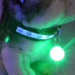 ไฟกระพริบ LED Clip on จี้ห้อยคอ สีเขียว ห้อยพวงกุญแจ ป้ายห้อยคอสุนัขและแมว