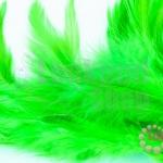 ขนนก สีเขียวอ่อน (20ชิ้น)