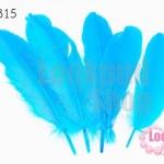 ขนนก สีฟ้า 5 ชิ้น