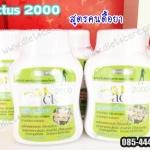 Cactus 2000 ขนาด 40 แคปซูล (สูตรคนดื้อยา)
