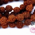น้ำตาพระศิวะ Yoga Beads
