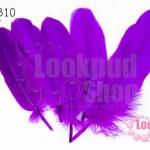 ขนนก(ก้าน) สีม่วง ( 5 ชิ้น)